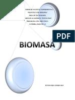 Biomasa. Trabajo