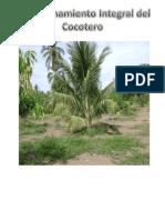 Aprovechamiento integral de la palma del coco.pdf