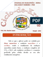 Aula 7 Ciclo de Krebs.pdf