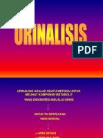 2.Urinalisis