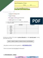 PT_4º_DETERMINANTESARTIGOS_FT