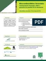 Solsona_biocombustibles forestals_100513_1551.pdf