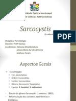 7.Sarcocystis