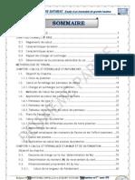 Projet BA partie II.pdf