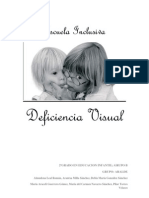 Deficiencias Visuales. Escuela Inclsusiva