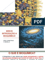 Aula_01_BREVE INTRODUÇÃO A BIOQUÍMICA!