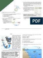 Ficha de Trabalho nr. 1 - Ecossistemas (soluções)