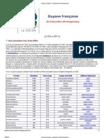 Guyane française_ composition ethnolinguistique