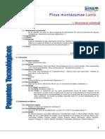 971Pinus montezumae.pdf
