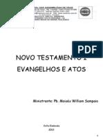 Apostila NT 1 - 2013.pdf