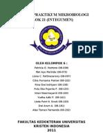 Laporan Praktikum Mikrobiologi (Completed)