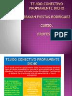 TEJIDO CONECTIVO PROPIAMENTE DICHO.pptx
