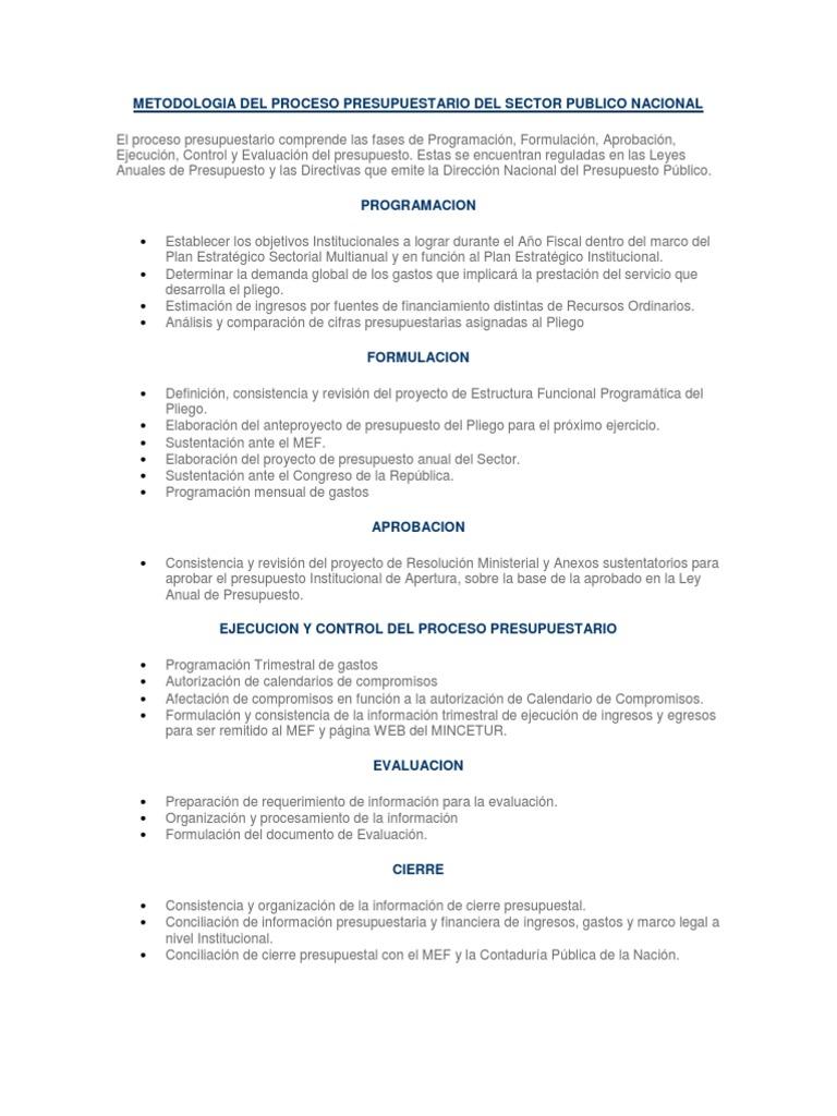 Metodologia Del Proceso Presupuestario Del Sector Publico