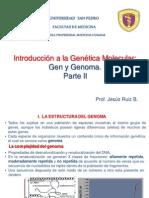 Genetica Molecular. Gen y Genoma Parte II