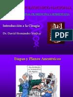 Etapas de La Anestesia General Ppt