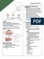 GI Dysmotility III