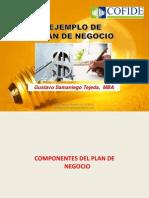 Ejemplo Gustavo Samaniego Elaboracion_del_plan