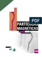 Ensaio de particulas magneticas
