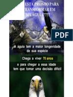 A Aguia1