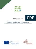 0 Background Paper Biogas Germany En