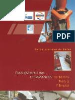 DT0011 Guide Beton