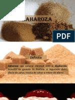 Zaharoza PDF