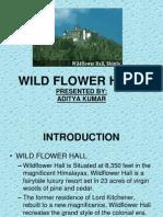 Wild Flowr Hall,Shimla
