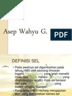 Tugas Biologi Sel(Asep Wahyu G.)