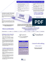 Consilium 3 Fold Brochure
