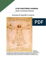 Apostila de Anatomia Humana