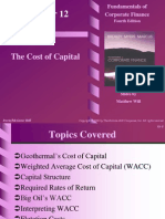 3. the Cost of Capital_2