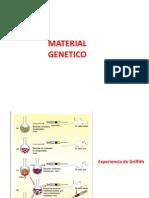 acidos nucleicos IVº Medio 2013