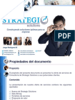 Brochure Strategic Solutions 2013