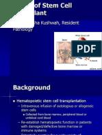 Basics of Stem Cell Transplant.ppt