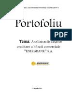 Portofoliu_energbank
