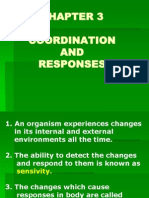 Coordination and Responses