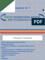 positive organizational behavior and psychological capital