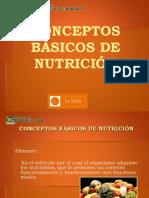 Presentacion nutricion 2012