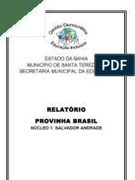 Cópia de RELATÓRIO PROVINHA BRASIL