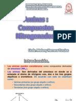Aminas, Aminoacidos, Proteinas y Enzimas CLASE 2011