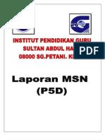Laporan MSN 6.3.2013