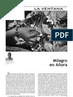 Revista Fiesta de la Cruz 2013 (Págs. 3-55 )