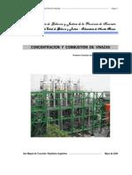 ConcentracionYCombustionDeVinazas (1)