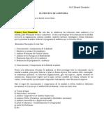 proceso de auditoria.doc
