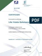 Propiedad Intelectual Certificado