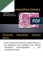 Síndrome Hemolítico Urémico (SHU)