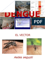 Dengue 26 Abril Hsr 2013