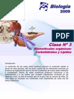 Clase 3 2009 OK (PPTcarbohidratos y lípidos)