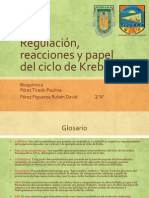 Regulacion, Reacciones y Papel Del Ciclo de Krebs