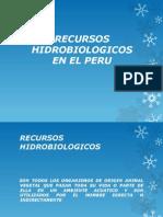 Recursos Hidrobiologicos Expo